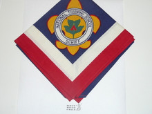 Schiff Scout Reservation, National Training School Neckerchief