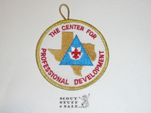 The Center For Professional Development Patch