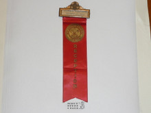 Old Boy Scout Reception Ribbon