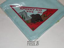 Order of the Arrow Lodge #300 Apoxky Aio n1 Neckerchief