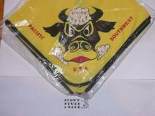 1967 Boy Scout World Jamboree Region 12 Contingent Neckerchief, New in bag