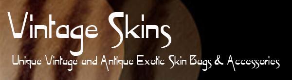 Vintage Skins