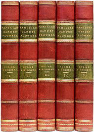 HIBBERD, Shirley & Hulme, F. Edward. Familiar Garden Flowers : First, Second, Third, Fourth, and Fifth Series. (FIRST EDITION - 5 VOLUMES - 1879-87)