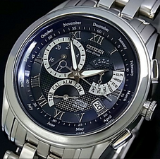 Citizen Mens Eco Drive Perpetual BL8007-55L