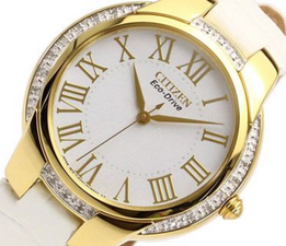 Citizen Eco Drive Ladies EM0092-01A