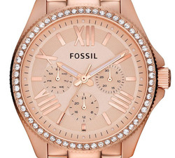Fossil Cecile Ladies Watch AM4483