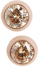 Michael Kors Ladies Earrings MKJ6037791