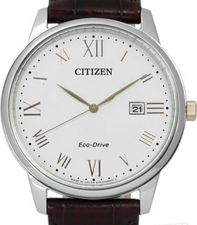 Citizen Eco Drive Watch BM6974-19A