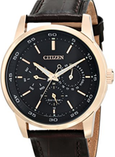 Citizen Eco Drive Multifunction BU2013-08E
