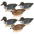 Flambeau 8015SUV Storm Front 2 - Classic Green-Winged Teal Decoys - 8015SUV