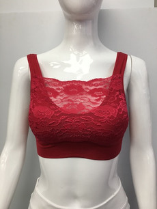 B03 Dark Red Lace Bra