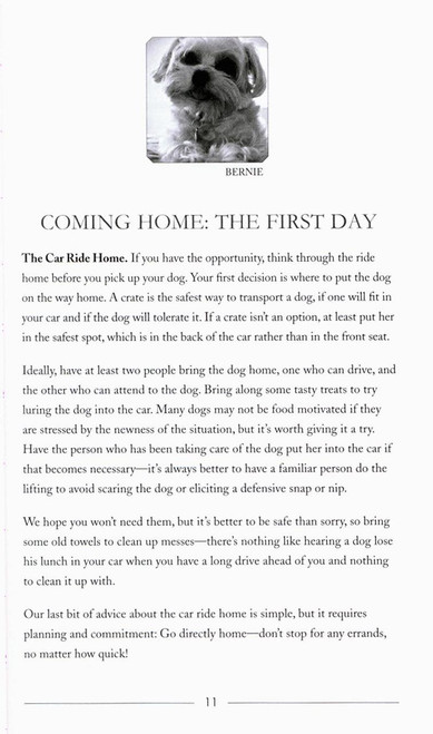 Love has no age limit welcoming an adopted dog into your home previous fandeluxe Epub