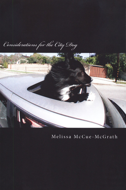 Considerations for the City Dog