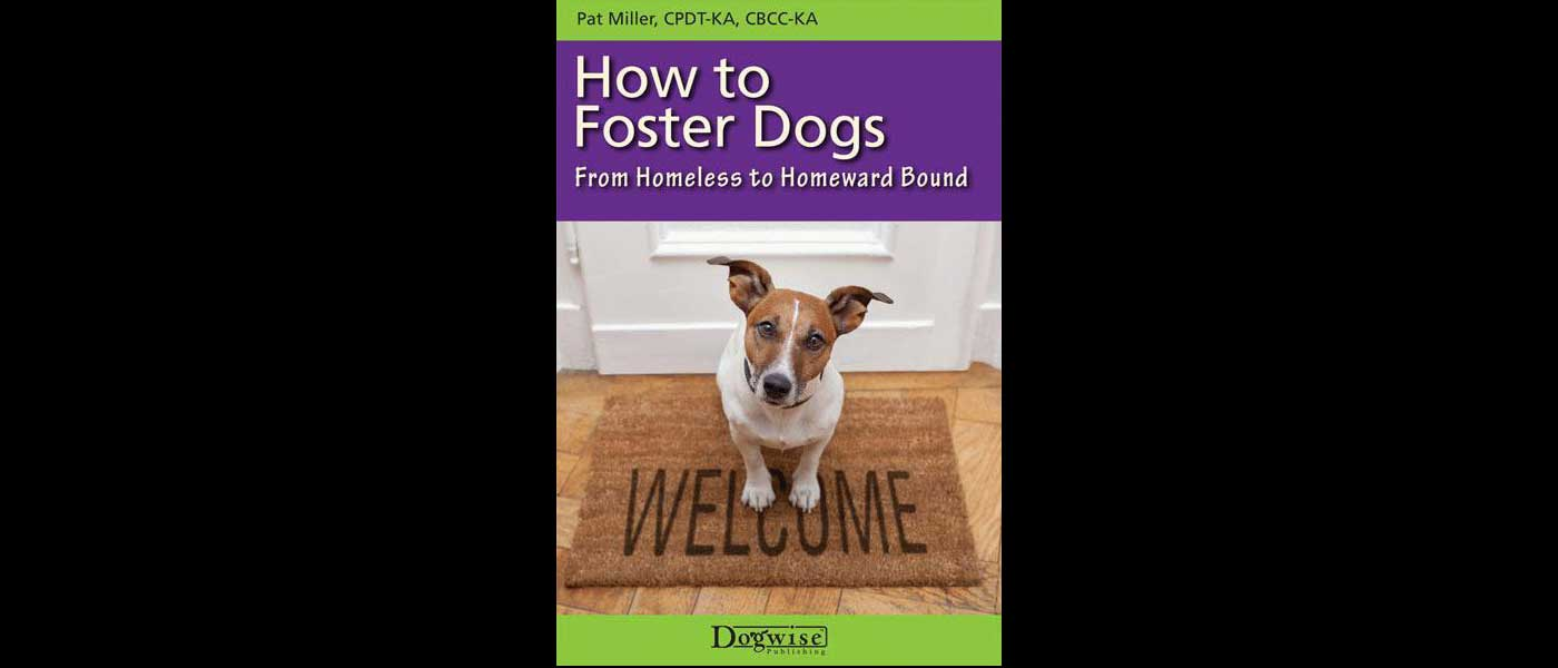 Dogwise the best books dvds and ebooks on dogs dogwise publishing backlist sale books starting at only 2 fandeluxe PDF