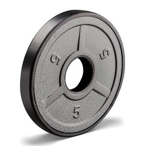 5 lbs. Olympic Plate to add weight to your Heavy Duty Workout