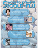 Cold or Flu Safety Posters in ENGLISH  pic 1