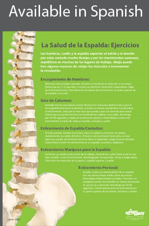 Back Health & Exercises Safety Poster in SPANISH  pic 1