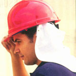 ERB Cloth Neck Shields for Hard Hats pic 1