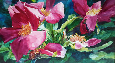 """For a Single Instant  Original watercolor by Karen Vernon  Transparent watercolor on museum grade Aquabord by Ampersand Art Supply  24"""" x 42""""  Wild roses  Ships unframed.  Ships in USA only"""