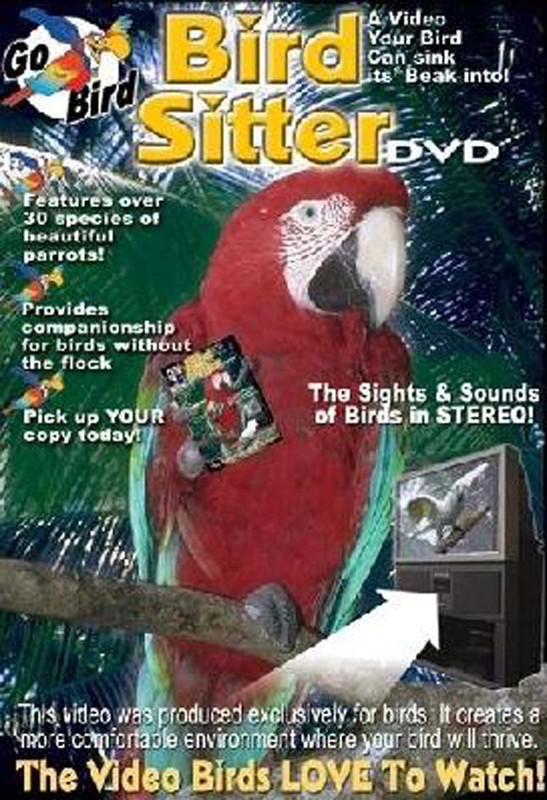 Cover of the book: DVD - Bird Sitter