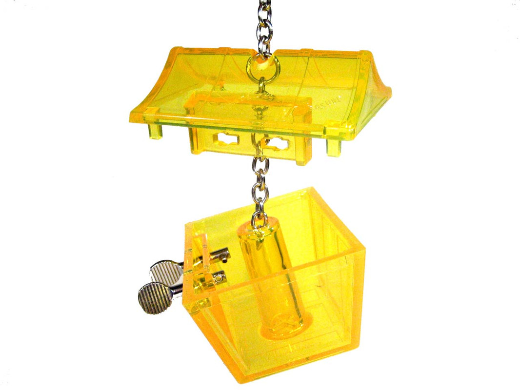 Parrot Treasure foraging toy