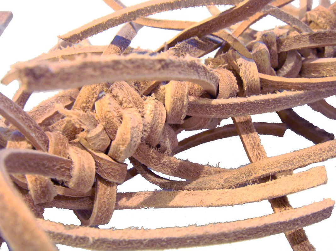 Close up of the Knotty