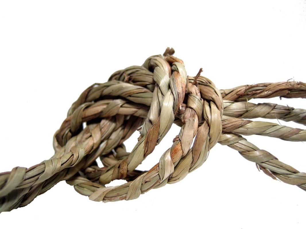 Seagrass Cord