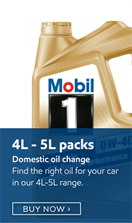 Domestic Oil Change Category