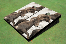 Big Horn Custom Cornhole Board