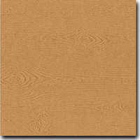 "Savanna Tindalo 8 1/2"" x 11"" 68 lb. text weight Matte Paper"