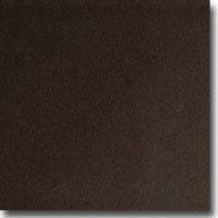 "Shine Bronze 8 1/2"" x 11"" 107 lb. cover weight Metallic Cardstock"