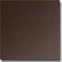 "Stardream Bronze 8 1/2"" x 11"" 105 lb. cover weight Metallic Cardstock"