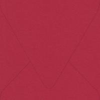 "Flavours Gourmet Chili Arbol 6 1/2"" Square Envelopes 50 Per Package"
