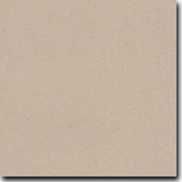"Environment Desert Storm 8 1/2"" X 11"" Cover Weight Matte Cardstock (25 Per Package)"