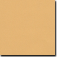 "Flavours Gourmet Caramelized Mustard 8 1/2"" X 11"" Cover Weight Matte Cardstock (25 Per Package)"