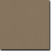 "Flavours Gourmet Rubbed Sage 8 1/2"" X 11"" Cover Weight Matte Cardstock (25 Per Package)"