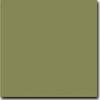 "Basis Olive 8 1/2"" x 11"" 80 lb. cover weight Matte Cardstock"