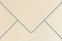 """Esse Pearlized Latte 6"""" x 9"""" Booklet Metallic Euro Pointed Flap Envelopes 50 Per Package"""