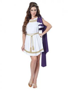 Greek Grecian Toga Ladies Dress