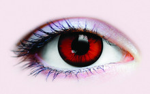 /dracula-collectible-novelty-lenses/