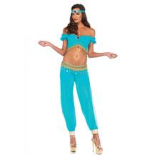 Desert Beauty Turquoise 3 pc Costume (85623)