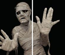 /menacing-mummy-window-posters-wowindows/