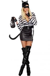 Cat Burglar Adult Women's Costume