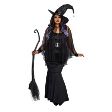 Bewitching Beauty Womens Plus Size Witch Costume