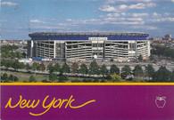 Shea Stadium (AP-493)