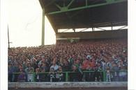 Celtic Park (No. 1392)