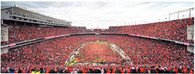 Ohio Stadium (934)