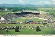 Howard J. Lamade Stadium (P19443)
