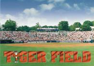 Tiger Field (K28872)