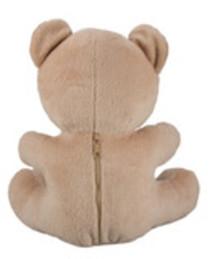 Teddy Bear Hidden Camera